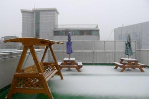 The rooftop garden... snow raining down...