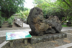 A lion-like basalt(玄武岩)